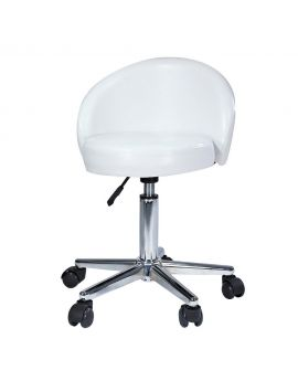 Cosmetic stool with backrest